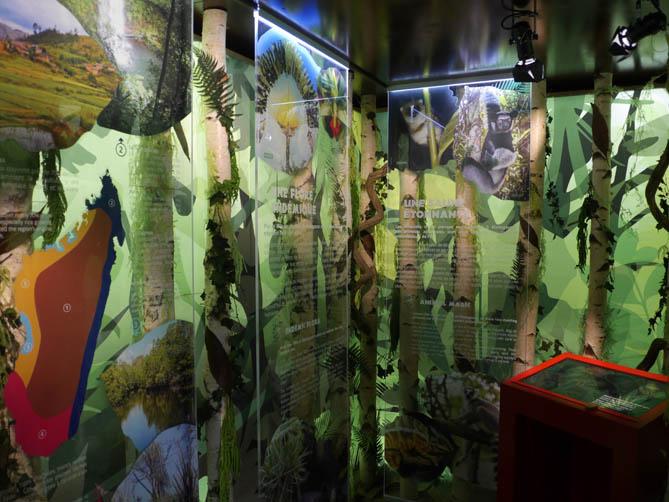 Tonga Soa ! Une exposition éphémère.