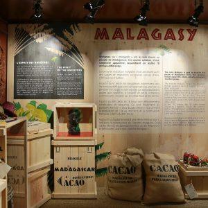 EXPOSITION MADAGASCAR